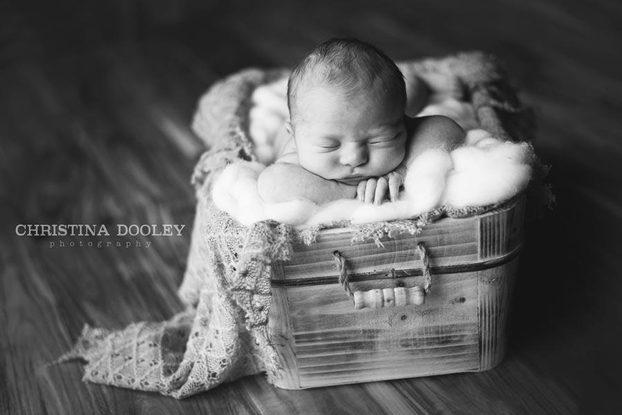 Baby in a basket portrait