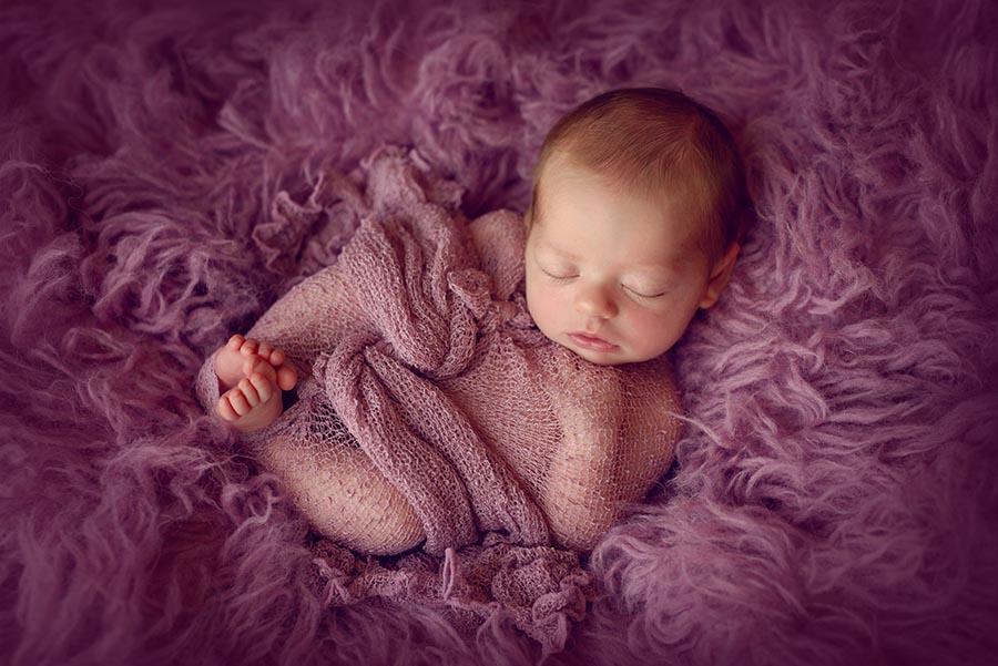 Newborn Photographer session in Denver Colorado.  Baby wrapped in purple on purple flokati.