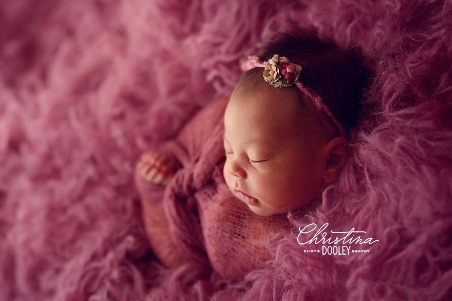 Newborn girl wrapped in knit stretchy raspberry colored wrapped posed on a raspberry colored flokati.
