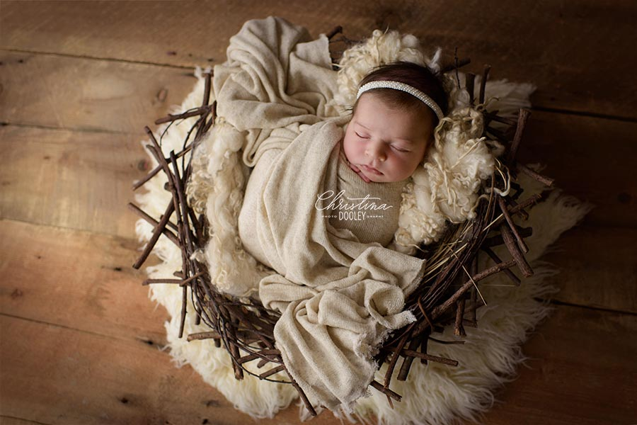 Newborn swaddled in creams posed in a nest on wood floors in Denver, Colorado