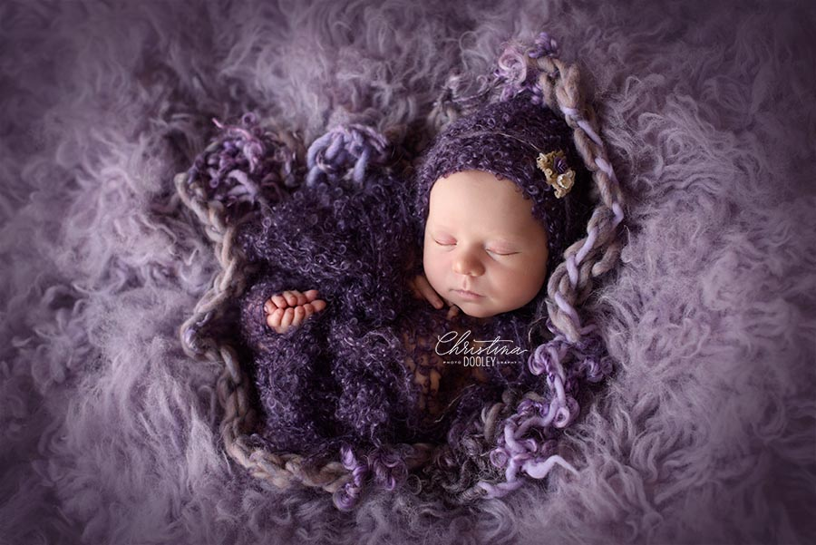 Newborn Baby photos in a purple fur fabric wrapped in a knit purple wrap in Denver