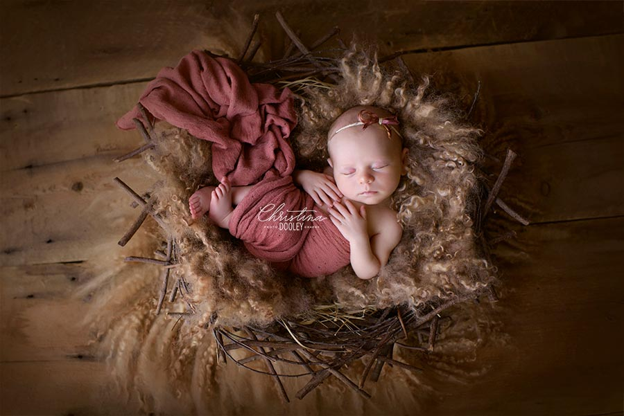 Baby in a nest for her newborn photos in Denver Colorado