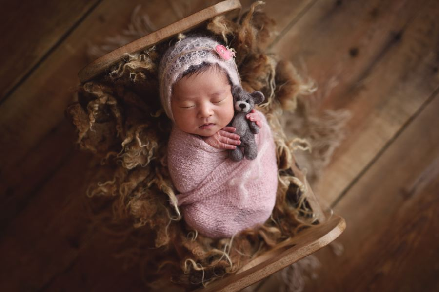 Baby in pink photographed in a little newborn bed holding a wool bear